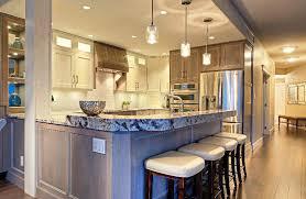 Modern Kitchen Ceiling Light Best Option Choice Kitchen Ceiling Lights Joanne Russo