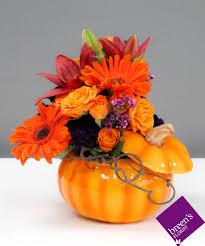 Fall Flowers Spice Houston Fall Flowers Breen U0027s