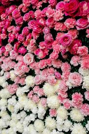 wall flowers the 2015 wedding trend 22 flower wall backdrops