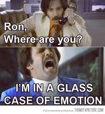 Glass Case Of Emotion Meme - a glass case of emotion the meta picture