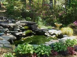 Azalea Topiary Forest Lane Botanicals Forest Garden