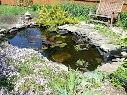 small backyard ponds to freshen your backyard the latest home