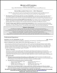 Sample Resume Of Ceo by Resume Sample For Executives