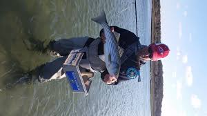 cape cod fishing report for 5 14 2015 on the water
