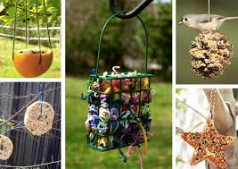 creative ways to care for your backyard birds one good thing by