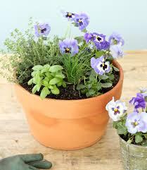 herb planter diy jenny steffens hobick flowers u0026 herb planter diy gift idea