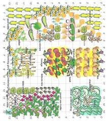 Permaculture Vegetable Garden Layout Stunning Companion Vegetable Garden Layout 1000 Ideas About