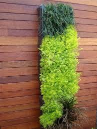 Vertical Garden Ideas 68 Best Vertical Garden Images On Pinterest Vertical Gardens