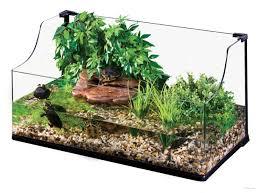 terrarium design stunning zoo med 40 gallon terrarium bearded