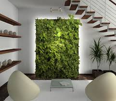 install a living wall instead of office plants evergreen