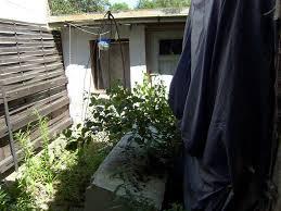 Haus Gesucht Eigenes Haus Gesucht U2013 Kleines Haus In Bad Sulza U2013 Hackert