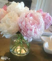 Pretty Types Of Flowers - best 25 peony flower ideas on pinterest peony peonies and