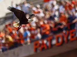 108 best auburn war eagle images on auburn tigers