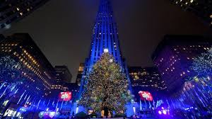 rockefeller center tree to come from pennsylvania wjac