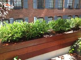 Hanging Planter Boxes by 10 Best For The Home Gardener Images On Pinterest Planter Boxes