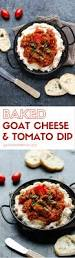 appetizers for halloween party 475 best dip and sauce recipes images on pinterest