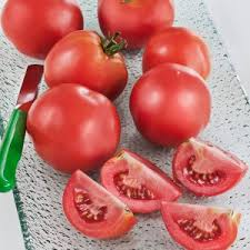 Types Of Patio Tomatoes Patio Tomato Small Tasty Fruit Compact Plants