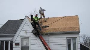 Seeking Ottawa Ottawa And Naplate Set Up Toll Free Hotline For Residents Seeking