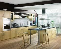 Birch Kitchen Cabinets Birch Kitchen Cabinets For Perfection Decoration U0026 Furniture