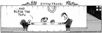 a vegetarian s survival guide to thanksgiving the suffolk voice