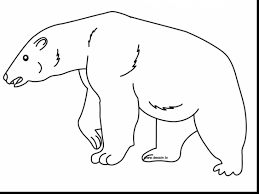 awesome bear coloring pages bear coloring dokardokarz net
