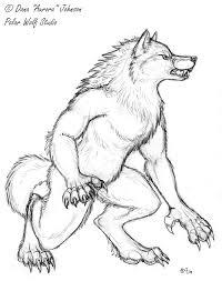 werewolf sketch by polarwolfstudio on deviantart werewolf 002