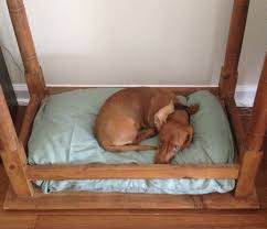Pvc Pipe Dog Bed Home Decor Diy Pallet U0026 Pipe Dog Bed Tutorial