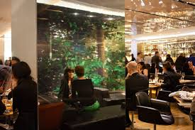 restaurant review the dining room at the modern the new york times