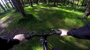 Ballyhoura Forest Luxury Homes by Cycling In The Wicklow Mountains