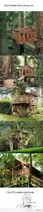 52 best tree fort ideas images on pinterest treehouses tree