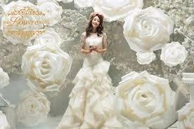 backdrop wedding korea new launch korean pre wedding photoshoot studios check in at