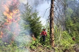 Wildfire Bc July 2015 by Slow Start For B C U0027s 2017 Wildfire Season Salmon Arm Observer