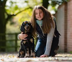 Dogs Helping Blind People The Hearing Dogs Shop