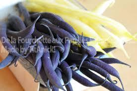 cuisiner les haricots blancs frais haricots que faire avec choix cuisson conservation recettes