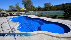wellspring 40 fiberglass pool by aquaserv pool spa inc - Who Makes The Best Fiberglass Pool Aquaserv Pool Spa Inc