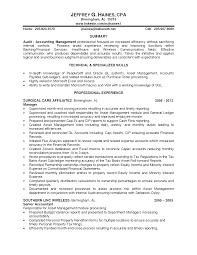 100 working knowledge resume download internal auditor