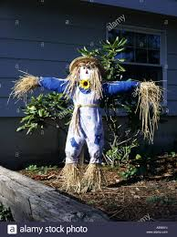 Homemade Scarecrow Decoration Homemade Scarecrow Decoration Instadecor Us