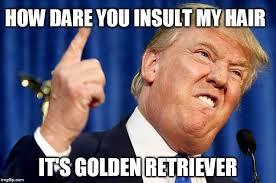 Insulting Memes - donald trump imgflip