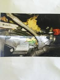 used lexus gx 460 denver rodents ate car wiring on my 2014 gx460 clublexus lexus forum
