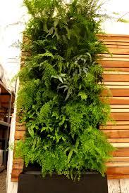 self watering vertical planters plants on walls florafelt vertical gardens