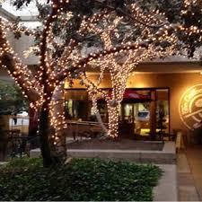 Outdoor Christmas Decorations Los Angeles by The Coffee Bean U0026 Tea Leaf 72 Photos U0026 58 Reviews Coffee U0026 Tea
