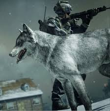 call of duty ghosts the wolf guard killstreak skin comes to