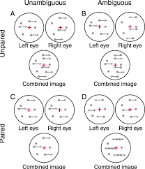 motion discrimination under uncertainty and ambiguity jov arvo