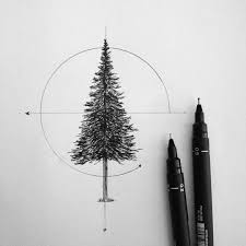 pine tree pencil and in color pine tree