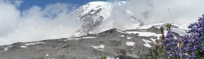 mount rainier national park u s national park service