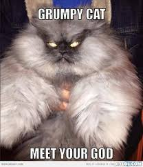 Kitty Meme Generator - grumpy cat meme grumpy cat meme generator grumpy cat meet your god