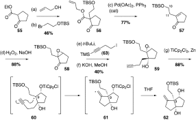 cat orie si e auto b total synthesis of anislactone a and merrilactone a
