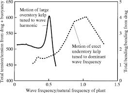 the mechanics of wave swept algae journal of experimental biology