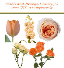 Peach Flowers Peach Pink And Orange Wedding Flowers Do It Yourself Floral