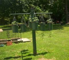 Upside Down Tomato Planter by Cool Container Vegetable Gardens University Of Maryland Extension